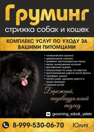 Елецкая реклама винтернете интернет реклама на сайт поиск