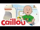 Kids English Caillou - Caillous Teddy Shirt S01E16 Cartoon for Kids