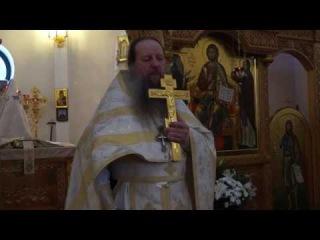 Проповедь о.Фотия 22.01.17 О священниках, Вере, болезнях и шаманстве (0589)