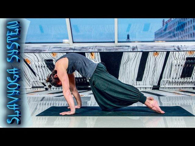 Випарита дханурасана в чатуранга дандасане ⚡ Асаны хатха йоги 💎 Йога для начинающих ⭐ SLAVYOGA