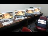 Gandalf sax guy office prank f1.com.ge