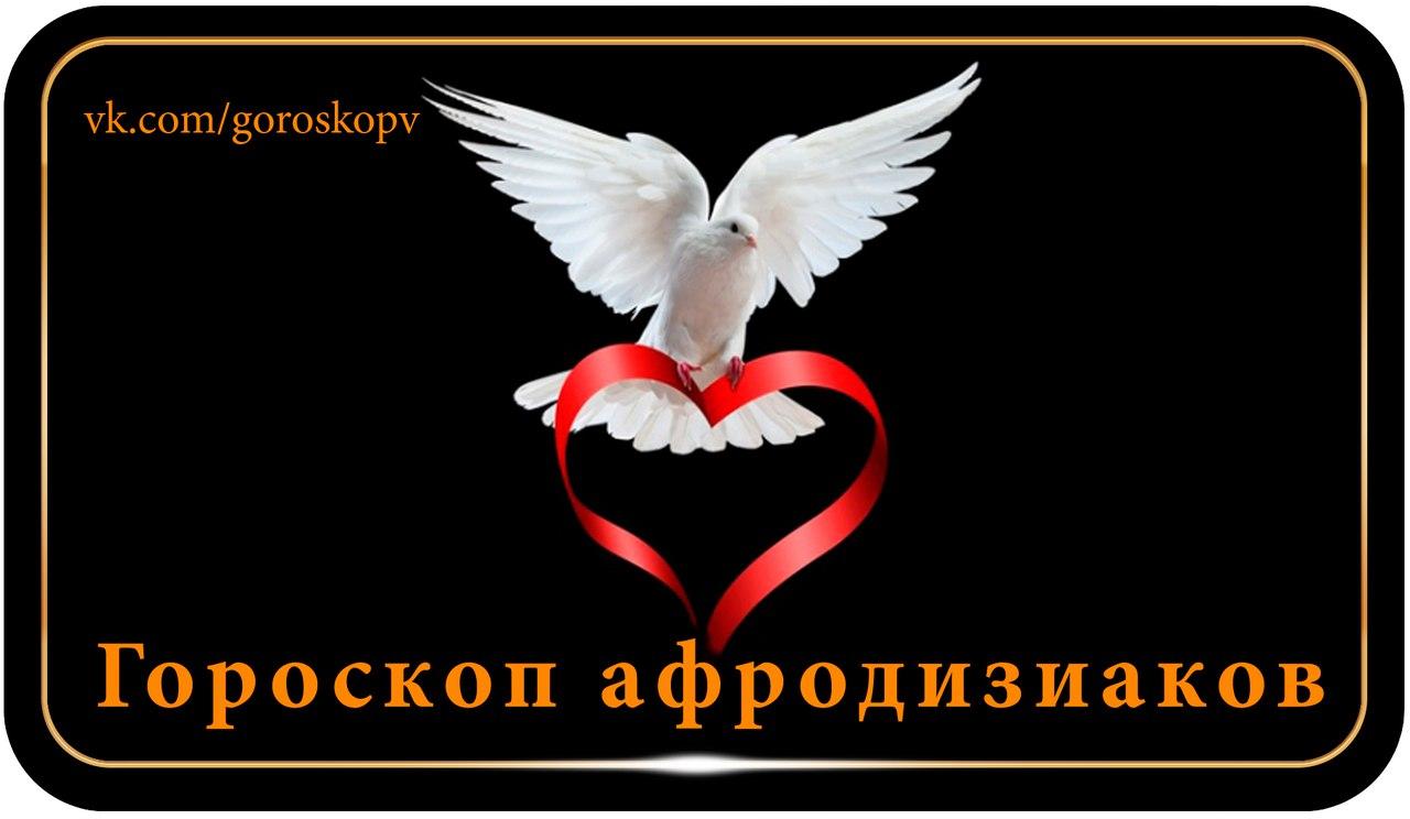 https://pp.userapi.com/c837737/v837737254/555ee/3Syn0ZH2K7Q.jpg