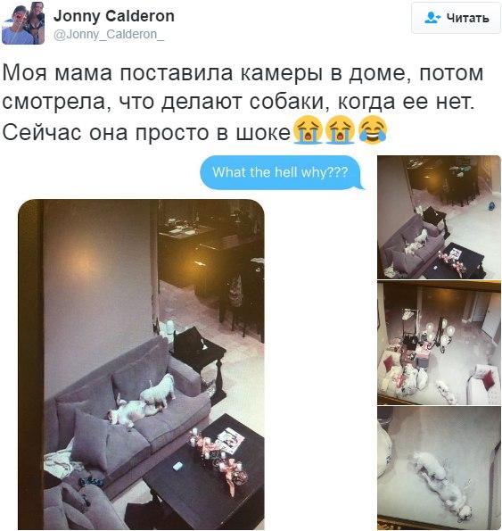 Эмиль Синклер  