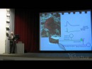 Павел Балабан - Принципы организации нервных сетей