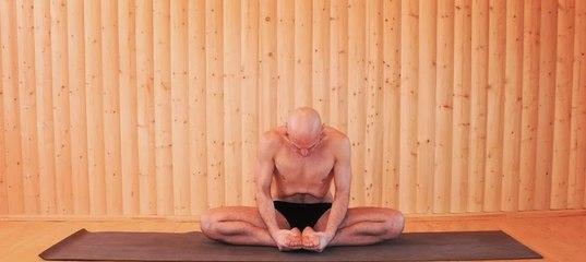 романенко йога лечебные циклы