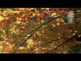 Черный кофе Листья - С ветки падающий лист (Переступи порог 1987)