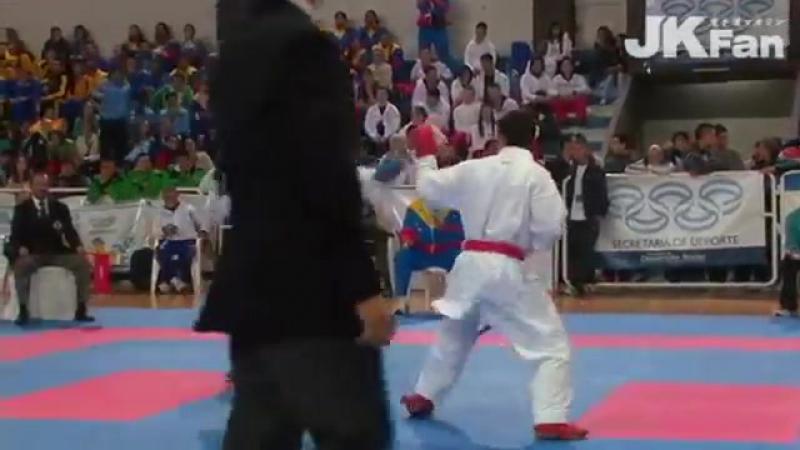 PKF Senior Championships 2013 Male Team Kumite Final (May.18th)