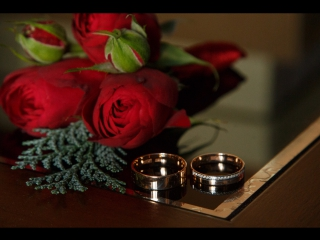 Счастливые мгновения нашей свадьбы