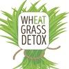 WheatGrass Detox - Сок из ростков пшеницы