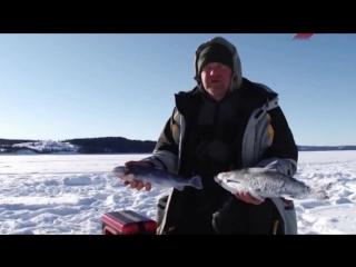 Рыбалка с Нормундом Грабовскисом - Ловля Сига и Гольца в Швеции (зима)