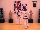 Tang Soo Do The Basics 2
