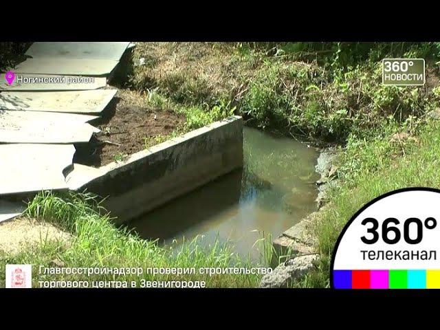 Река Васса угрожает Ногинскому району экологической катастрофой