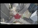 Largest Living Maple Leaf Created in Winnipeg