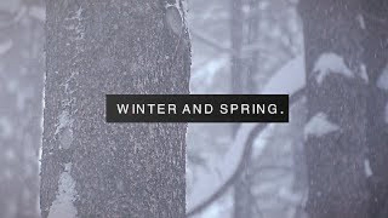 Winter and spring.