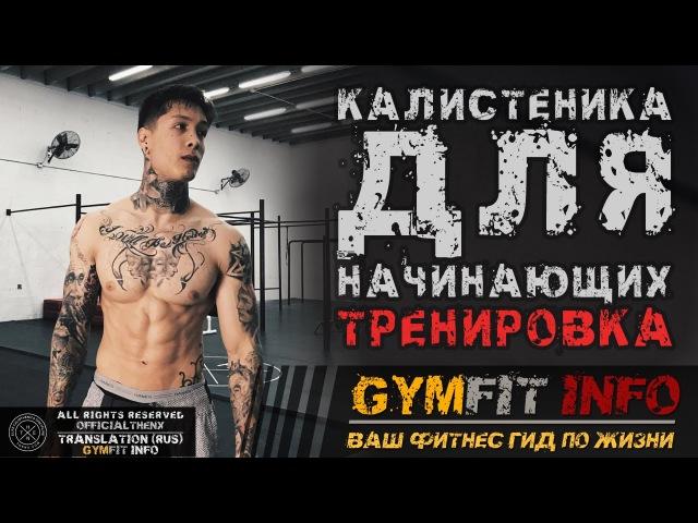 КРИС ХЕРИА. Калистеника для НАЧИНАЮЩИХ. Тренировка с СОБСТВЕННЫМ ВЕСОМ (воркаут) | RUS, GymFit INFO