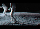 ACBCR a crashed blackbird called rosehip / fight again (christian löffler remix) Official Video