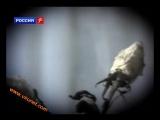 Ласковый Май-Белые Розы Клип)