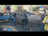 Более 250 саженцев украсили участок сквера на Рахова
