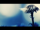 Виктория Ганина Breathe No More (Amy Lee cover)