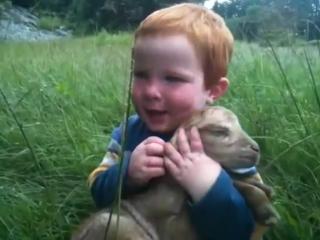 Любовь к животным - это с детства.