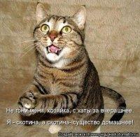 Вика Стародубова, 10 октября , Уфа, id100311517