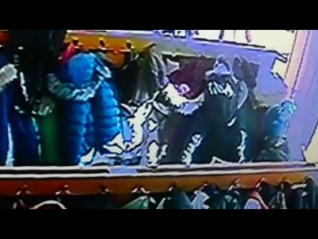 Женщина обчистила карманы в школьной раздевалке в Новосибирске