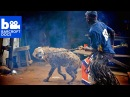 DOCS: The Hyena Men