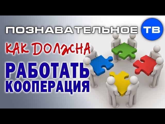 Как должна работать кооперация (Познавательное ТВ, Сергей Грошев)