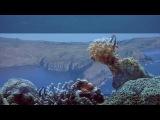 Nikos Vangelis - Ocean Dreams