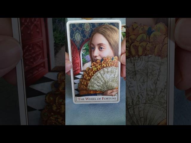 Обзор колоды карт Таро Алисы (Alice Tarot) Baba Studio.