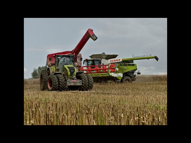 Rapsernte XXL | 4 x Claas Lexion | 1x New Holland | Harvest in Germany