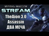 TheAion 3.0 Путь убийцы (ассасин) динамичный класс