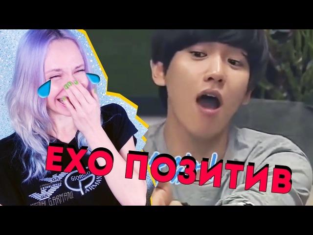 ЕХЕТ-ОХОРАТ! EXO ПОЗИТИВ | K-POP ARI RANG