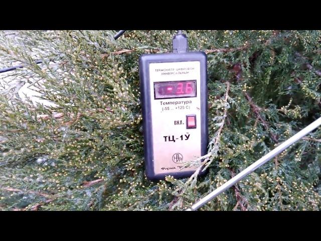 Виноградник весной.Температура почвы на винограднике открытого грунта, и в теплице.