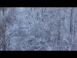 Yan Yamin - Improvisational Diaphonia Bagatelle VIII