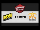 NaVi vs Fnatic 1 bo3 DreamLeague 8, 01.12.17