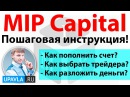 MIP Catpital   Пошаговая Инструкция! Как ПРАВИЛЬНО инвестировать деньги?