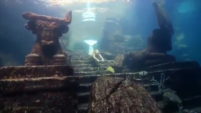 Ханна Фрейзер более 10 лет делает подводные шоу, которые рассказывают о красоте океана
