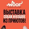 WООF фестиваль: 11 и 12 ноября