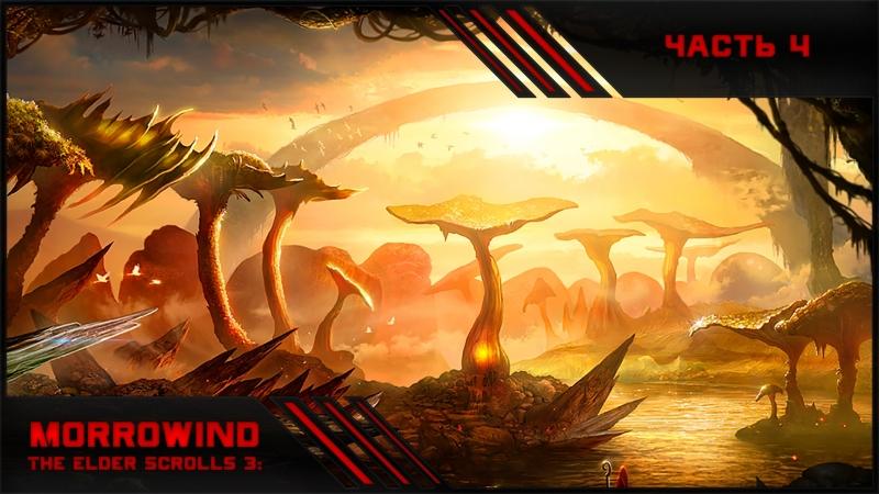 Morrowind - Полное прохождение с РП отыгрышем 4