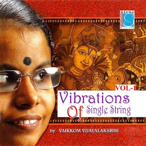 Instrumental альбом Vibrations On A Single String Vol 1