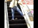 Крыса атакует людей на эскалаторе