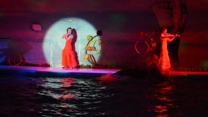 Минский дельфинарий «Немо» - дарит романтику для влюблённых сердец❤