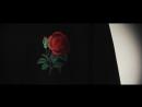 ROSE SWEATSHIRT PROMO