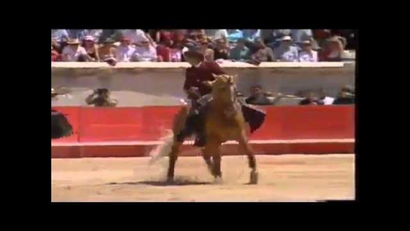 Самый потрясающий конь Merlin