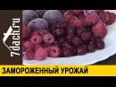 Что приготовить из замороженных овощей и ягод 7 дач