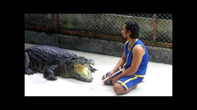 Крокодил-дил-дил,укусил что есть сил...