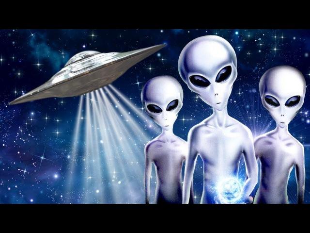 Серые пришельцы: есть ли у них душа|Биороботы|Евреи| Восприятие начинающих экстр...