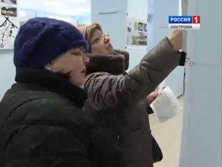 Жители Костромы, Нерехты, Буя и Шарьи сегодня выбирают парковые территории для благоустройства