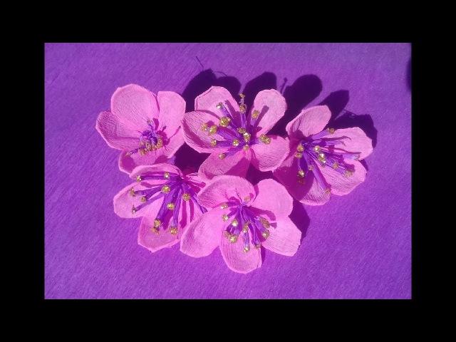 цветы / цветы сакуры /цветы вишни /как сделать цветы из гофрированной бумаги мастер /веточка сакуры